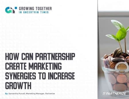 2004_-_How_Can_Partnership_Create_Marketing_Synergies_to_Increase_Growth__-_Partnerize_eGuide-1
